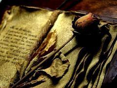 Primo de Rivera i la història de la Diada del Llibre i el Día del Idioma Español/Primo de Rivera y la historia del Día del Libro y el Día del Idioma Español