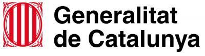 La Generalitat de Catalunya, ¿sense web?